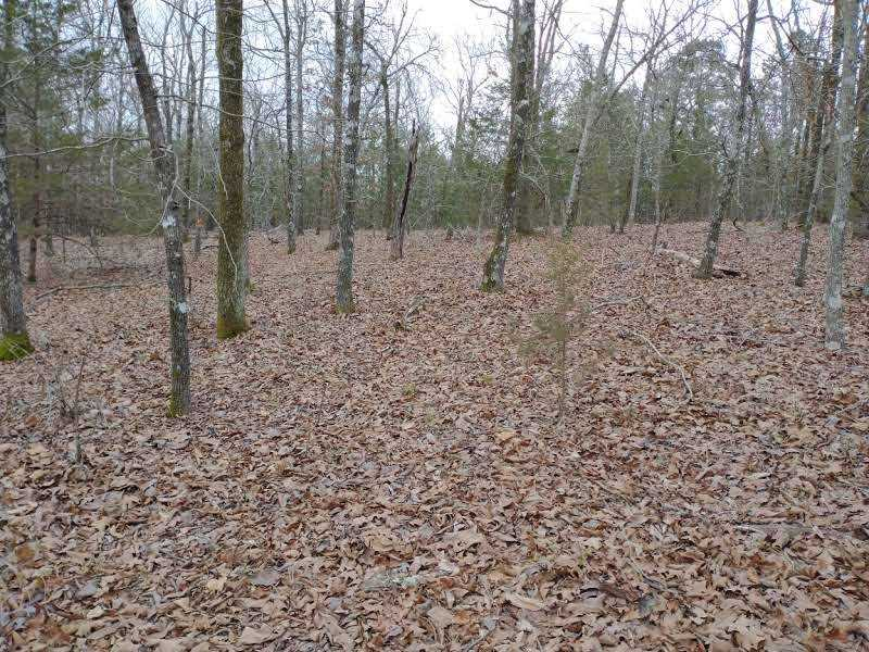 land, ranch, recreational, hunting, oklahoma, cabin | Winding Stairs #1 Bengal, OK 74563 14