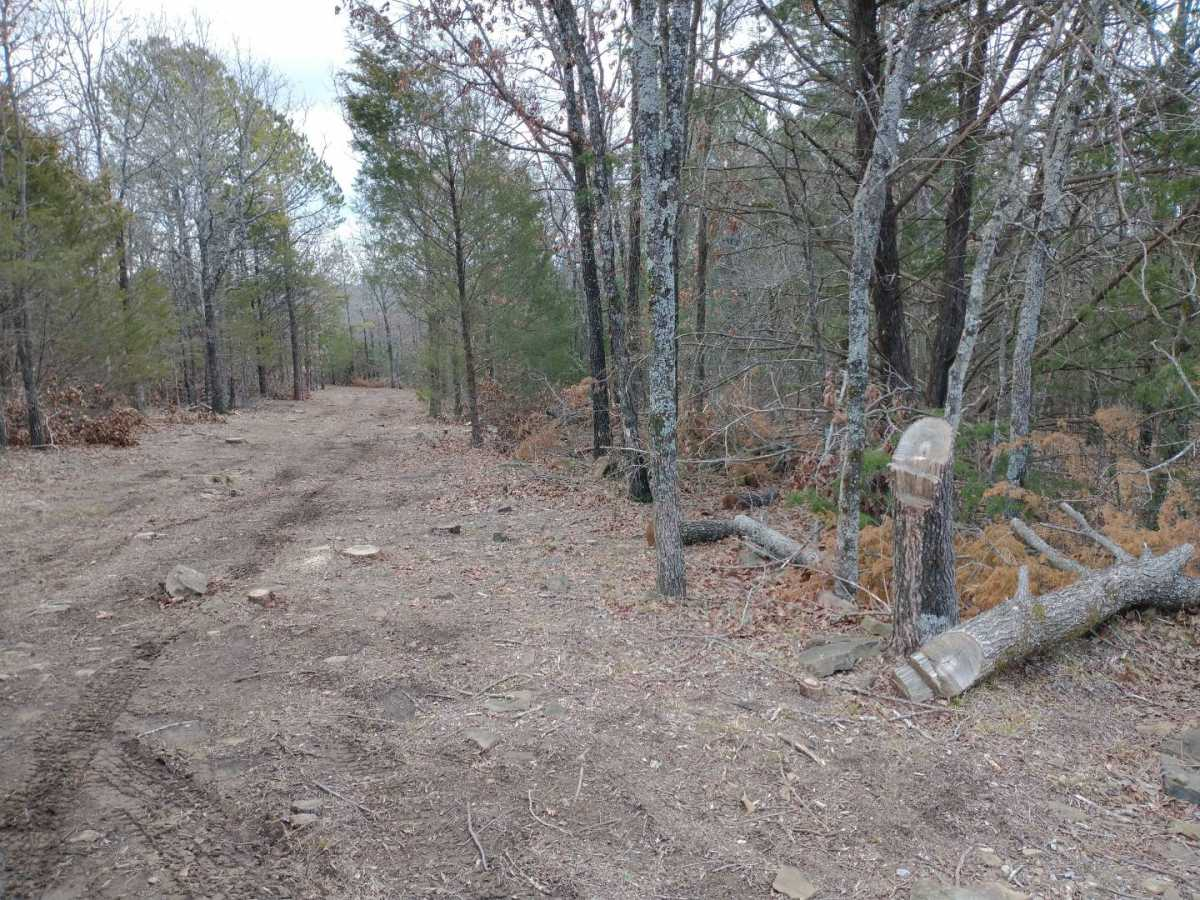 land, ranch, recreational, hunting, oklahoma, cabin | Winding Stairs #1 Bengal, OK 74563 4