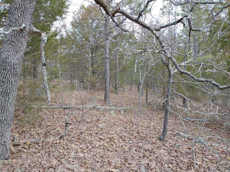 land, ranch, recreational, hunting, oklahoma, cabin | Winding Stairs #1 Bengal, OK 74563 5