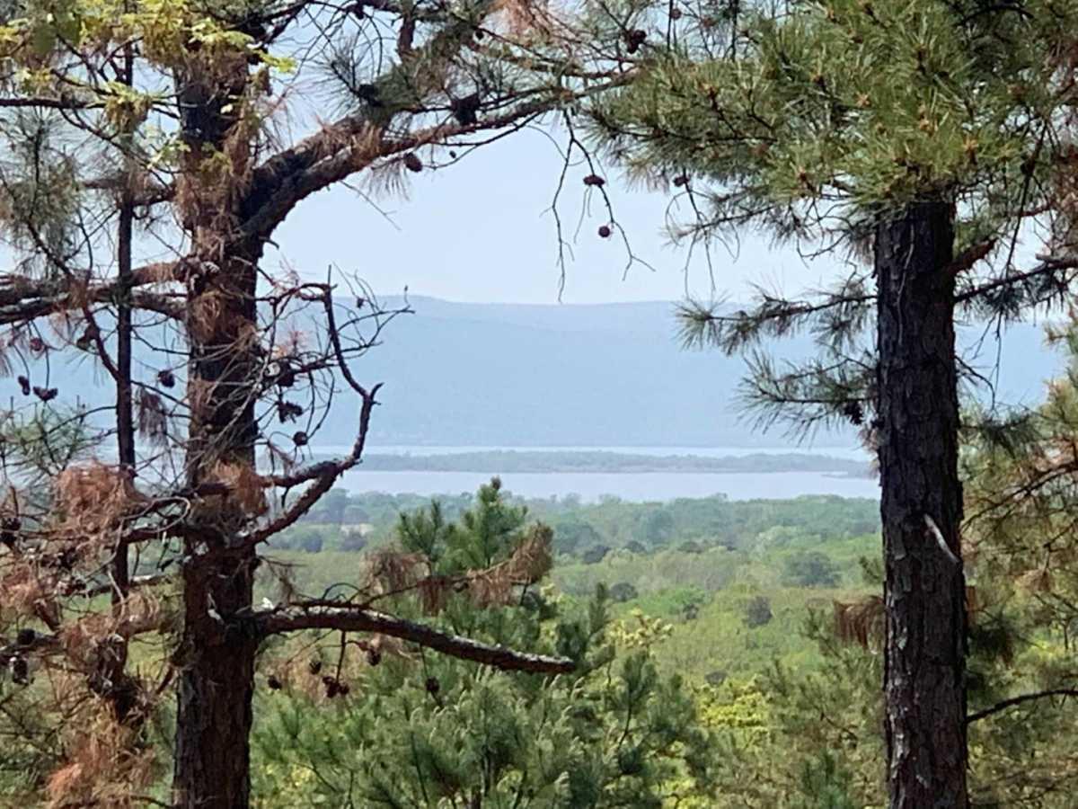 Active | Lakeview Mountain Lots Tuskahoma, OK 74574 0