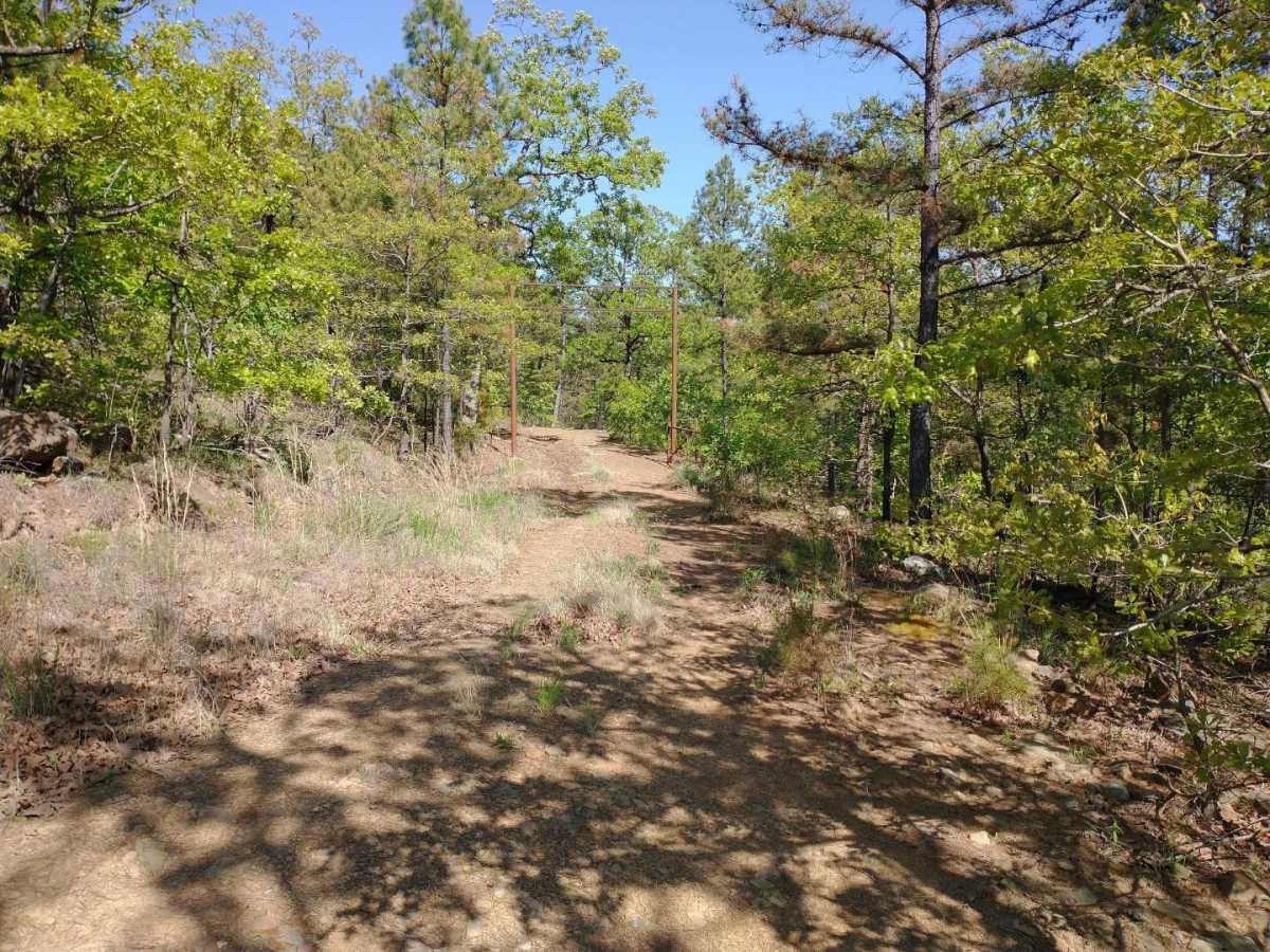 Active | Lakeview Mountain Lots Tuskahoma, OK 74574 27