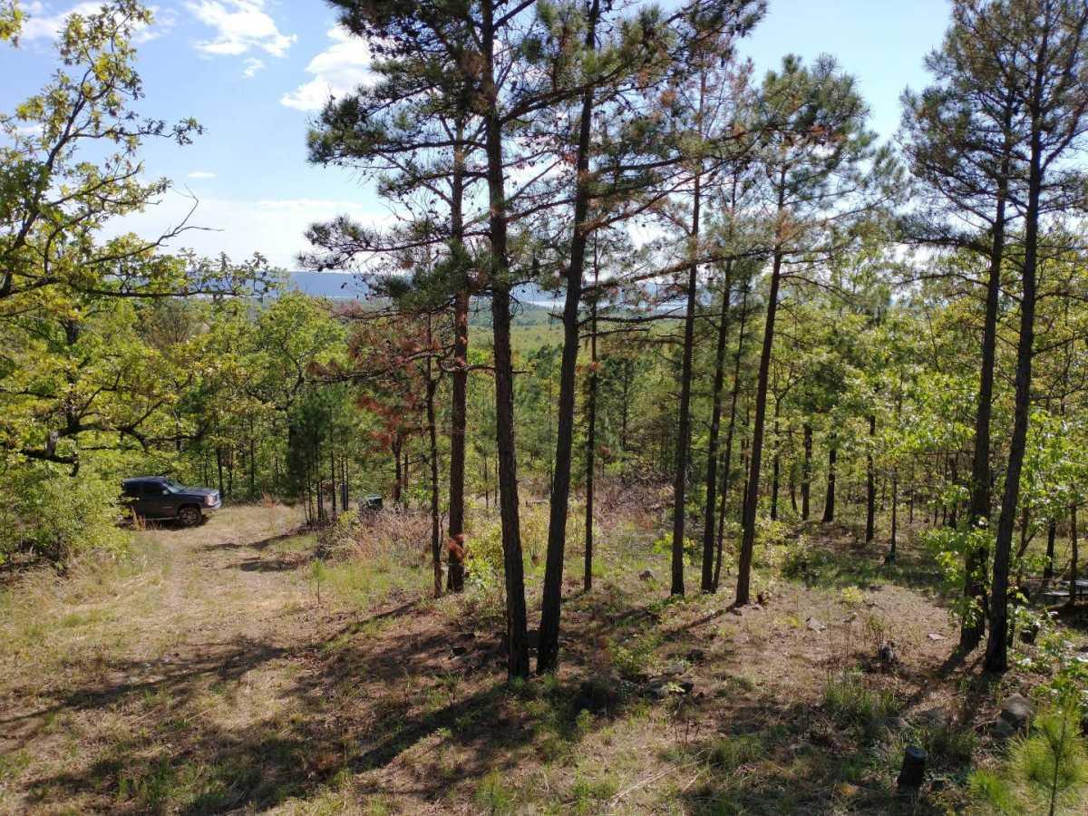 Active | Lakeview Mountain Lots Tuskahoma, OK 74574 32
