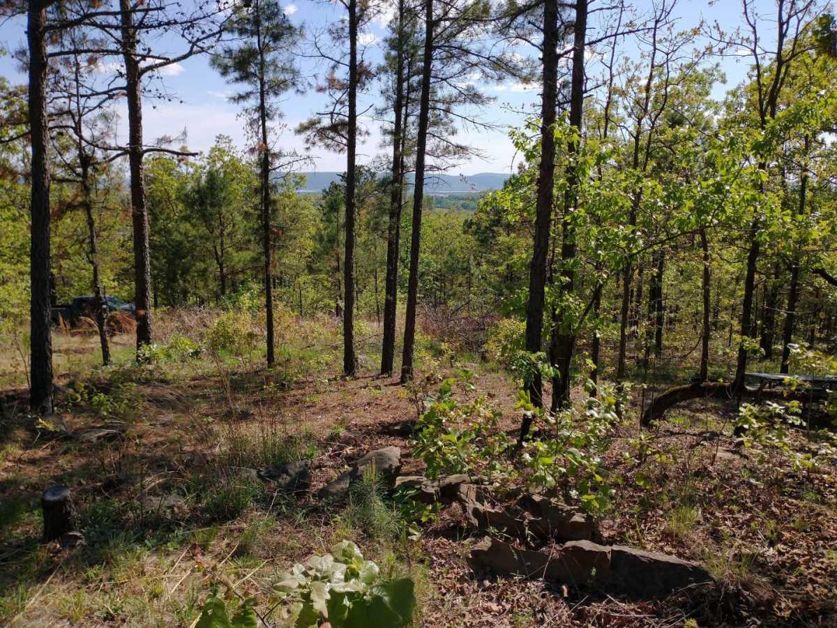 Active | Lakeview Mountain Lots Tuskahoma, OK 74574 33