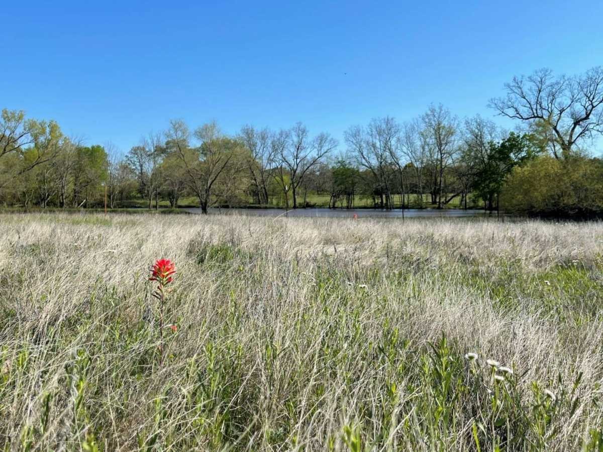 land, ranch, recreational, hunting, oklahoma, cabin   9160 OK Hwy 7 West - GREEN ACRES Mill Creek, OK 74856 0