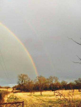 land, ranch, recreational, hunting, oklahoma, cabin   9160 OK Hwy 7 West - GREEN ACRES Mill Creek, OK 74856 11