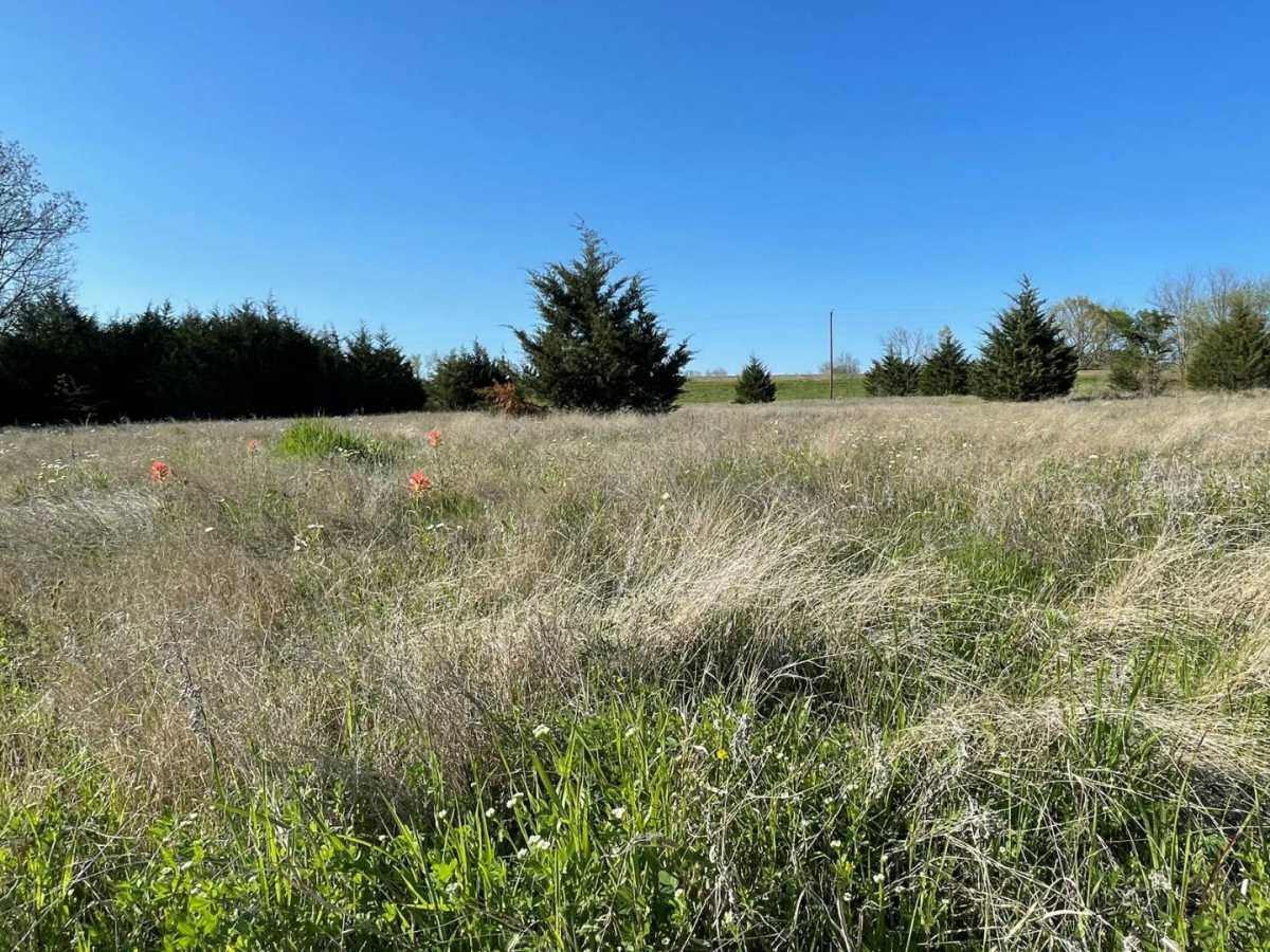 land, ranch, recreational, hunting, oklahoma, cabin   9160 OK Hwy 7 West - GREEN ACRES Mill Creek, OK 74856 2
