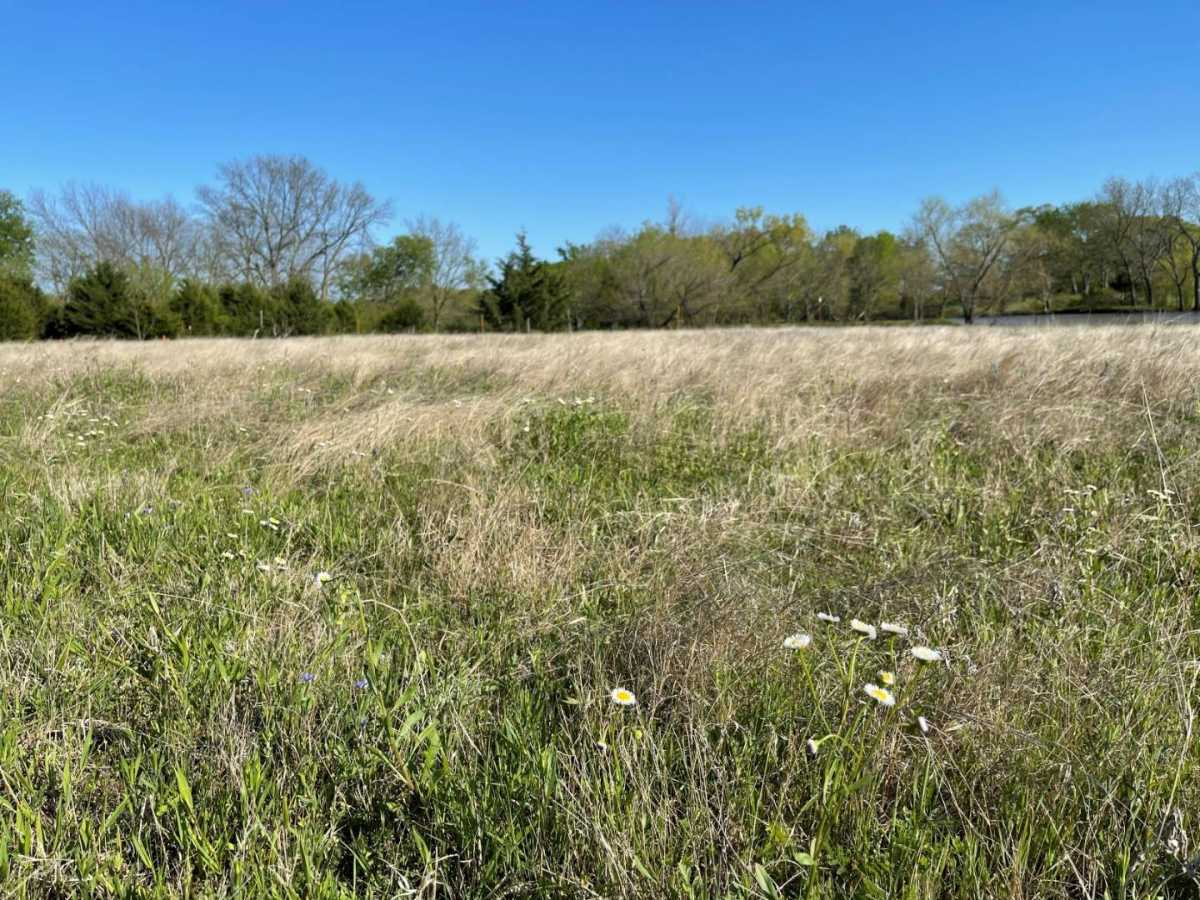 land, ranch, recreational, hunting, oklahoma, cabin   9160 OK Hwy 7 West - GREEN ACRES Mill Creek, OK 74856 3