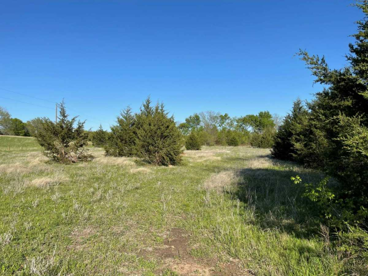 land, ranch, recreational, hunting, oklahoma, cabin   9160 OK Hwy 7 West - GREEN ACRES Mill Creek, OK 74856 4