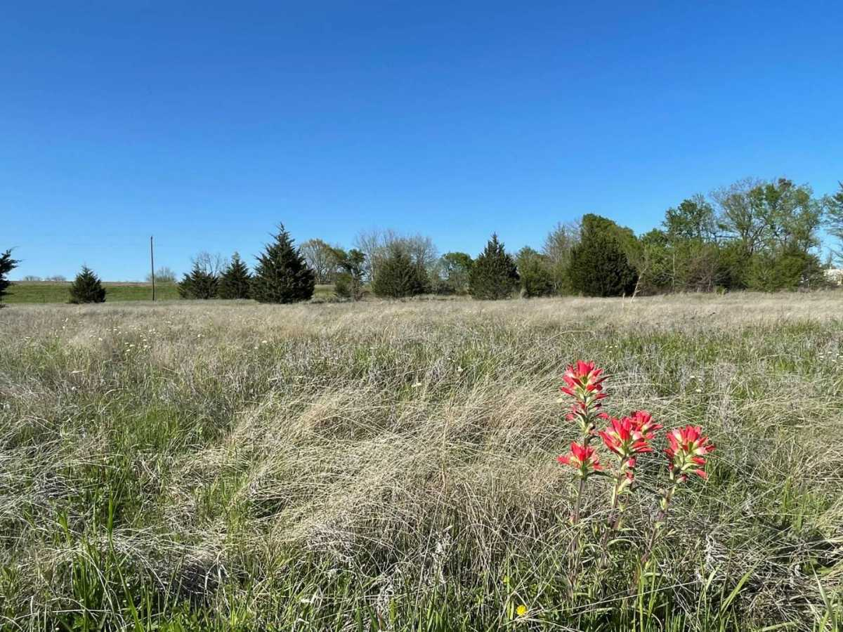 land, ranch, recreational, hunting, oklahoma, cabin   9160 OK Hwy 7 West - GREEN ACRES Mill Creek, OK 74856 6