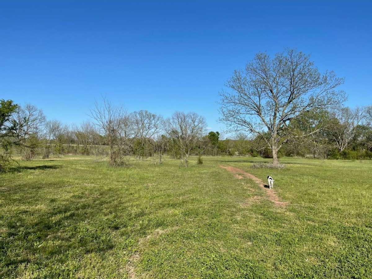 land, ranch, recreational, hunting, oklahoma, cabin | 9120 OK Hwy 7 West - SOUTHERN ESCAPE RANCH Mill Creek, OK 74856 0
