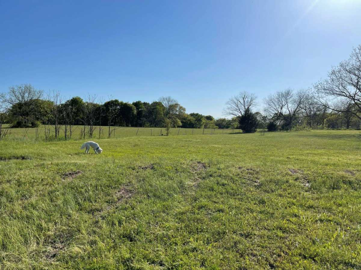 land, ranch, recreational, hunting, oklahoma, cabin | 9120 OK Hwy 7 West - SOUTHERN ESCAPE RANCH Mill Creek, OK 74856 10