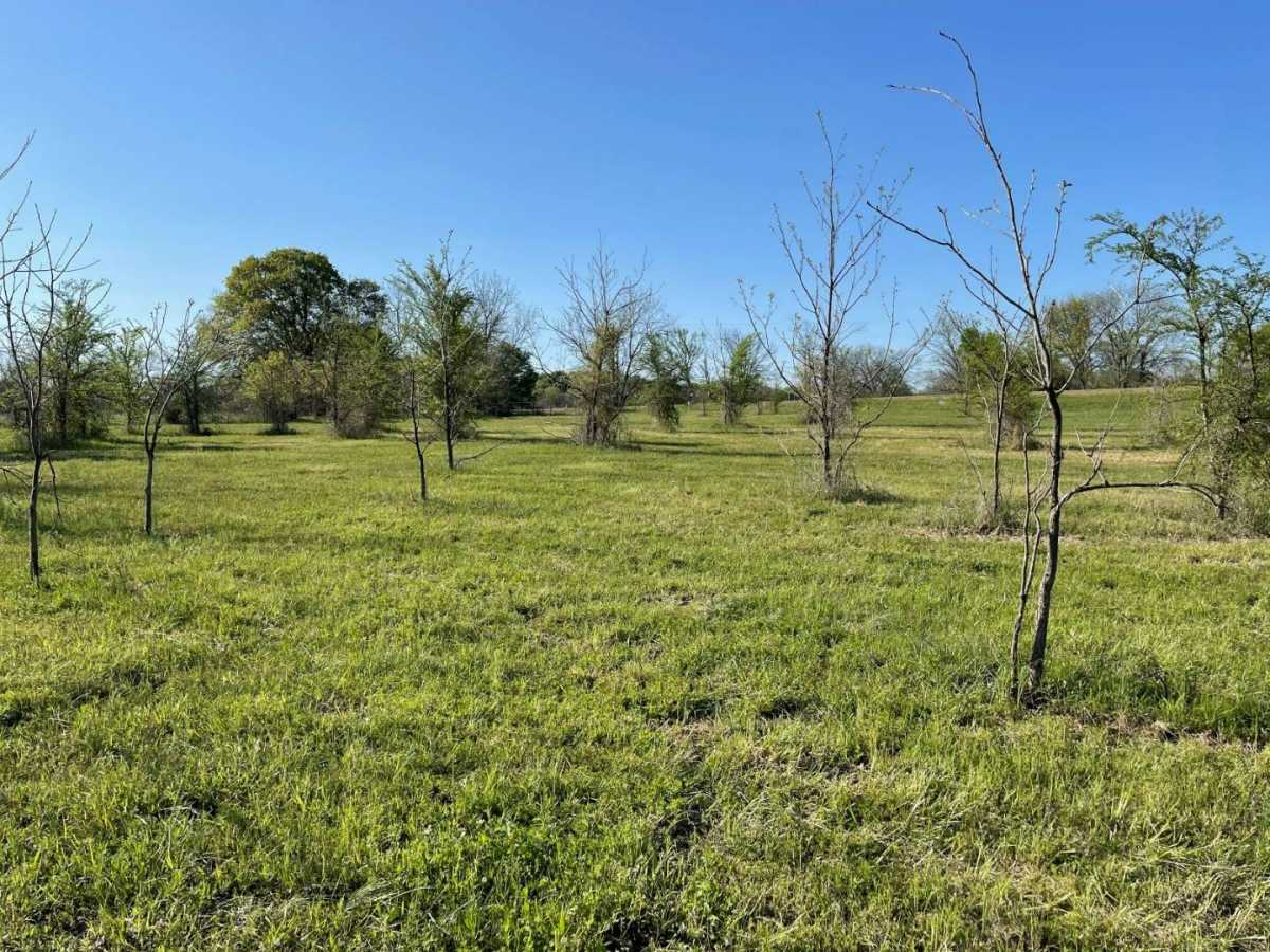land, ranch, recreational, hunting, oklahoma, cabin | 9120 OK Hwy 7 West - SOUTHERN ESCAPE RANCH Mill Creek, OK 74856 18