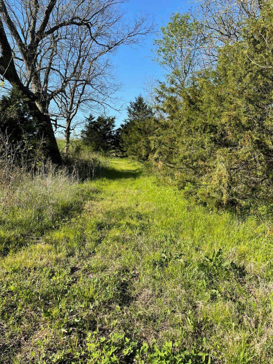 land, ranch, recreational, hunting, oklahoma, cabin | 9120 OK Hwy 7 West - SOUTHERN ESCAPE RANCH Mill Creek, OK 74856 19