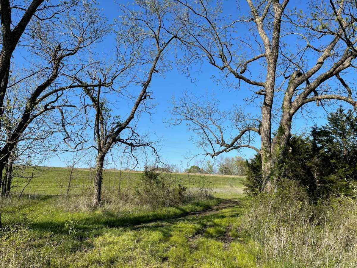 land, ranch, recreational, hunting, oklahoma, cabin | 9120 OK Hwy 7 West - SOUTHERN ESCAPE RANCH Mill Creek, OK 74856 26