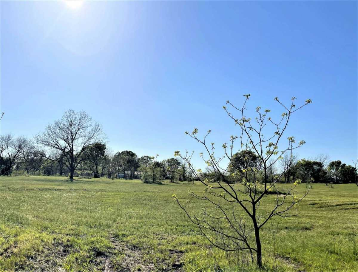 land, ranch, recreational, hunting, oklahoma, cabin | 9120 OK Hwy 7 West - SOUTHERN ESCAPE RANCH Mill Creek, OK 74856 33