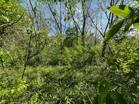 land, ranch, recreational, hunting, oklahoma, cabin | 208 SE 5th St Antlers, OK 74523 9