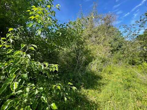 land, ranch, recreational, hunting, oklahoma, cabin | 208 SE 5th St Antlers, OK 74523 14