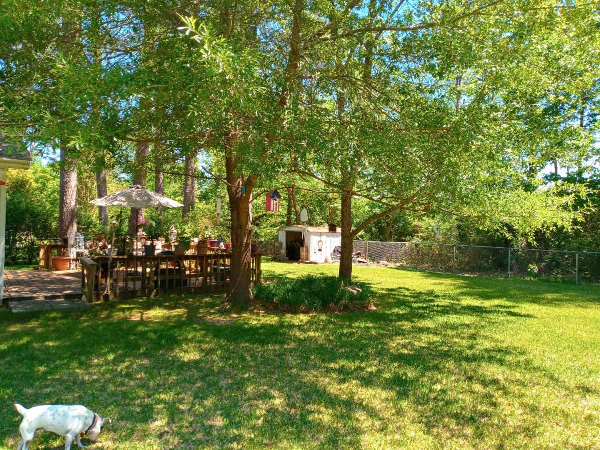 land, ranch, recreational, hunting, oklahoma, cabin | 10925 SE 1141st Ave Talihina, OK 74571 43