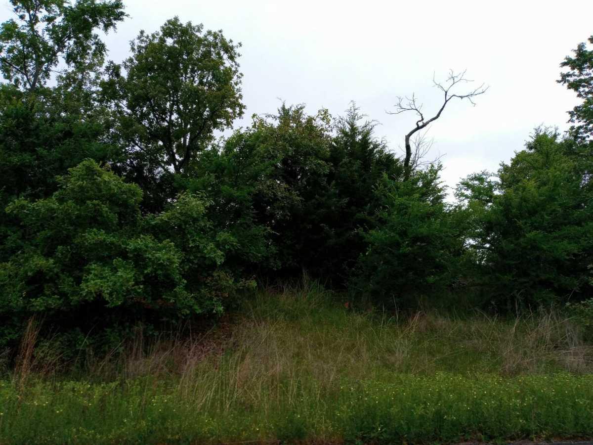 land, ranch, recreational, hunting, oklahoma, cabin   3998 Indian Hwy Talihina, OK 74571 11
