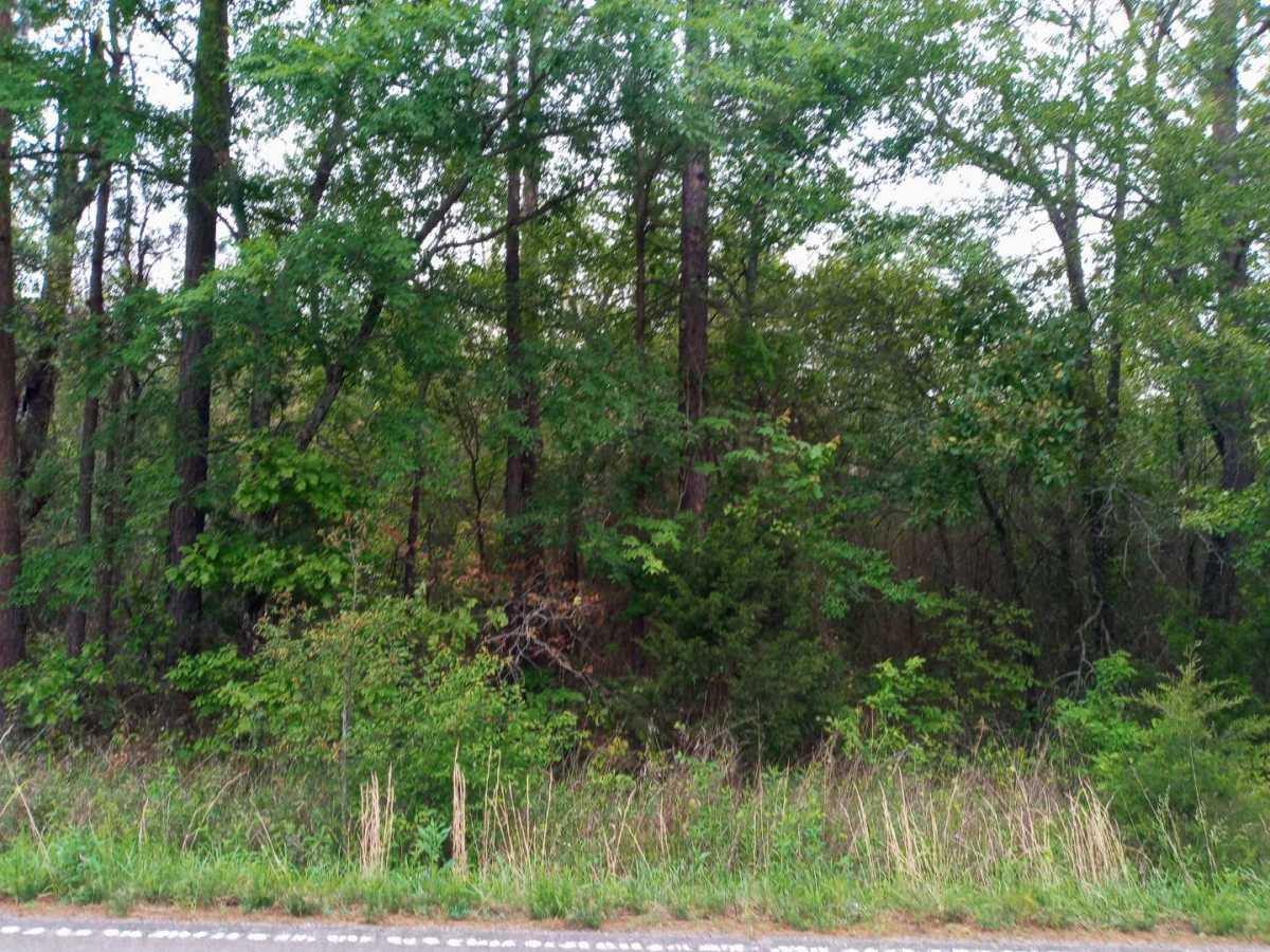 land, ranch, recreational, hunting, oklahoma, cabin   3998 Indian Hwy Talihina, OK 74571 4