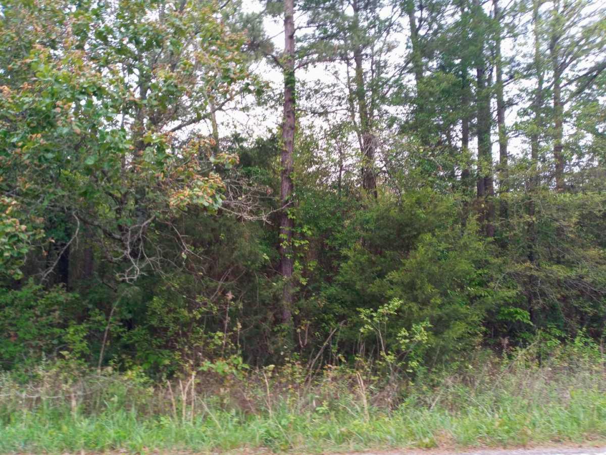 land, ranch, recreational, hunting, oklahoma, cabin   3998 Indian Hwy Talihina, OK 74571 5