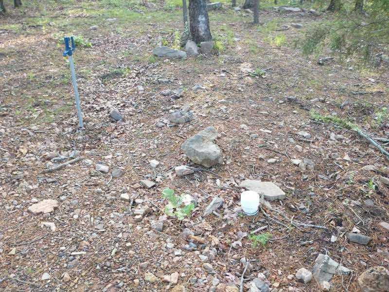 land, ranch, recreational, hunting, oklahoma, cabin | SE 1080th Rd/Watertower Rd Talihina, OK 74571 11