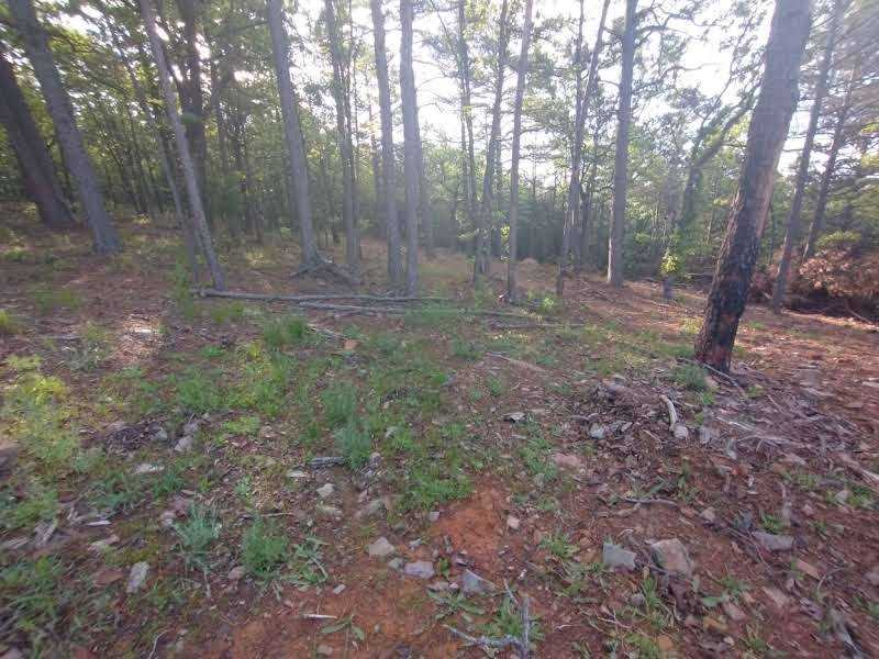 land, ranch, recreational, hunting, oklahoma, cabin | SE 1080th Rd/Watertower Rd Talihina, OK 74571 21