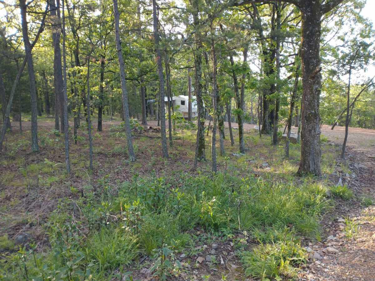 land, ranch, recreational, hunting, oklahoma, cabin | SE 1080th Rd/Watertower Rd Talihina, OK 74571 4