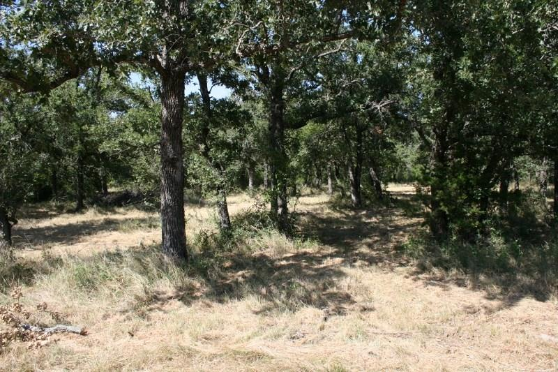 Sold Property | 00 Prickly Pear  Gordon, TX 76453 11