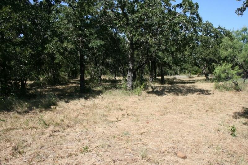 Pending | 00 Prickly Pear  Gordon, TX 76453 12