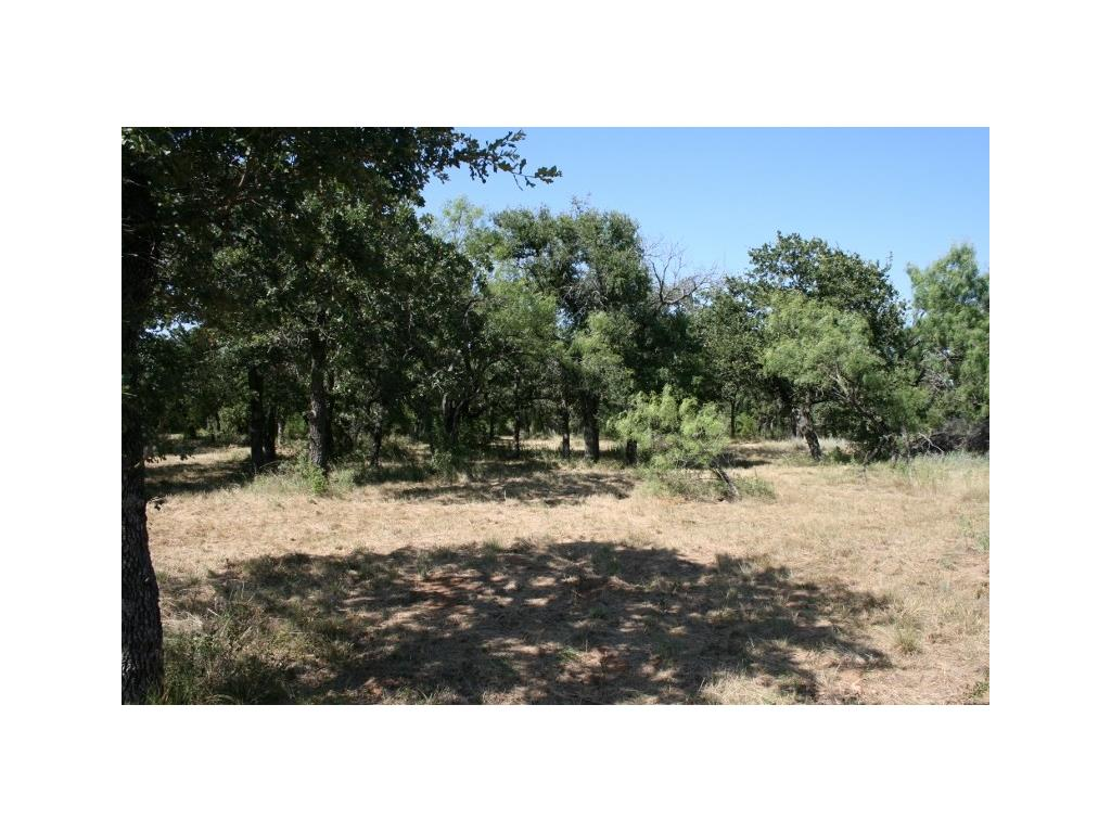 Sold Property | 00 Prickly Pear  Gordon, TX 76453 13