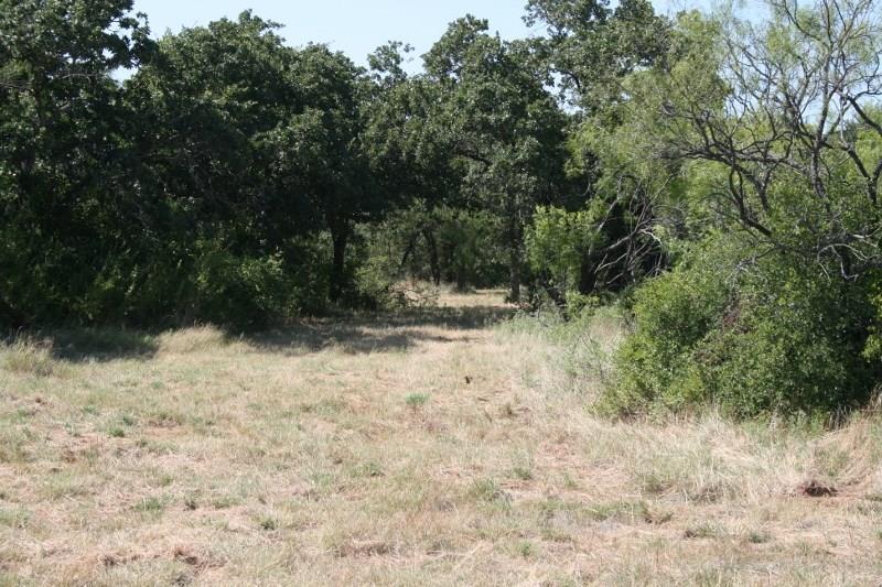 Active | 00 Prickly Pear  Gordon, Texas 76453 3
