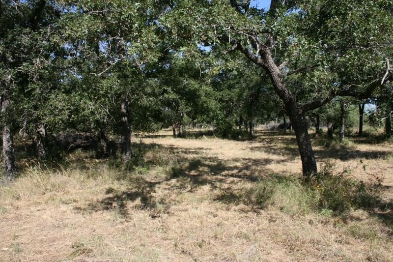 Pending | 00 Prickly Pear  Gordon, TX 76453 8