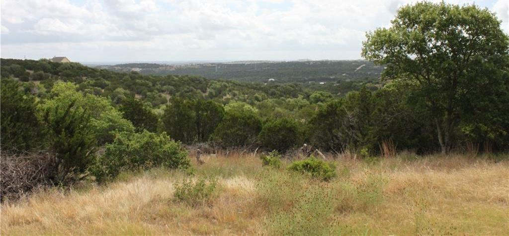 Sold Property | 4515 Bob Wire Road Spicewood, TX 78669 7