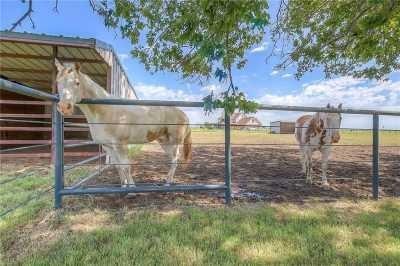 Sold Property | 13357 Fm 1385  Pilot Point, Texas 76258 15