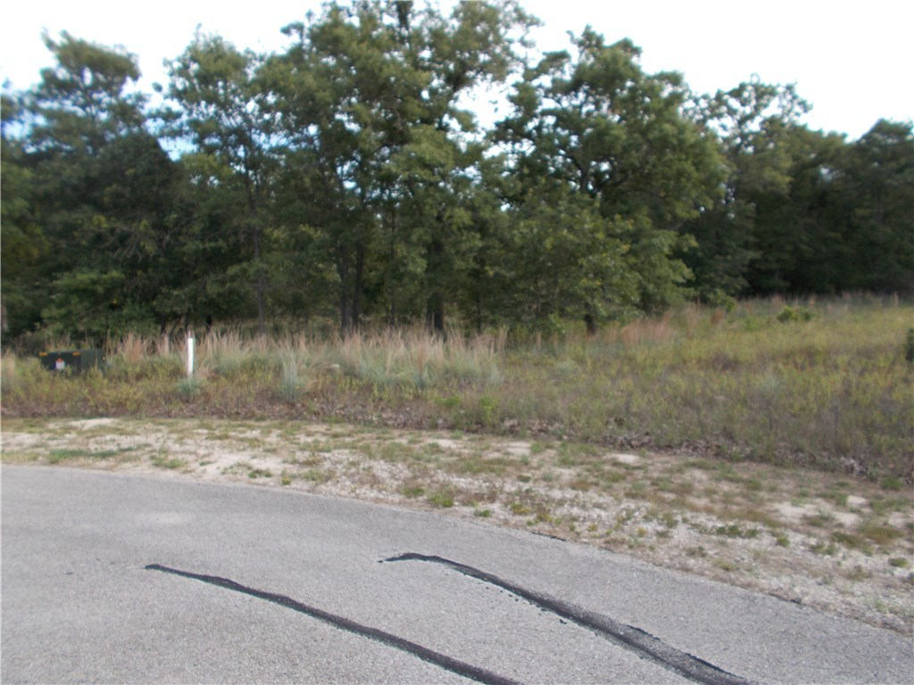 Sold Property | 101 Sycamore Trail Elgin, TX 78621 0