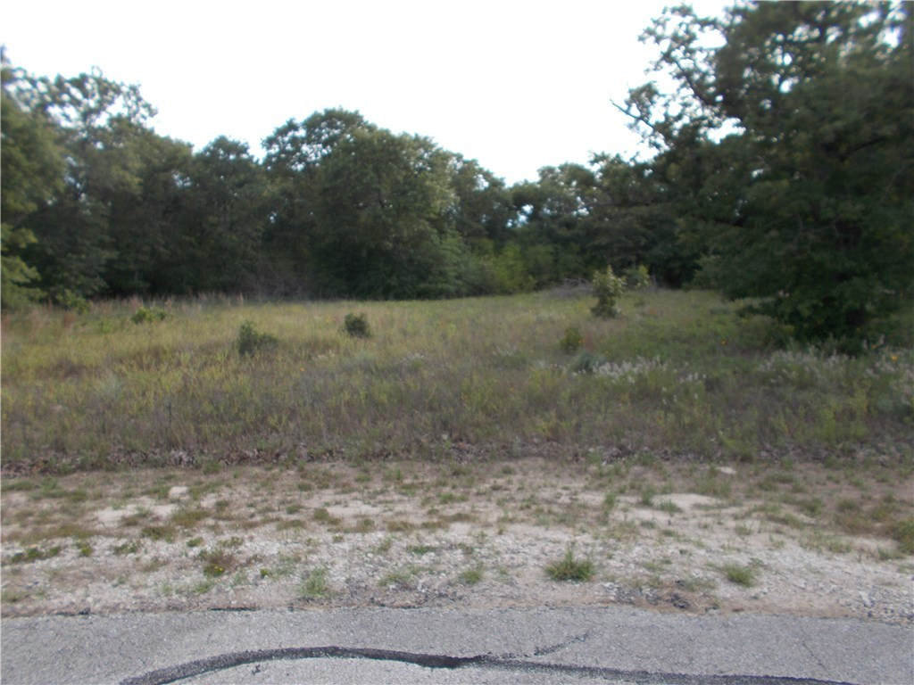 Sold Property | 101 Sycamore Trail Elgin, TX 78621 3