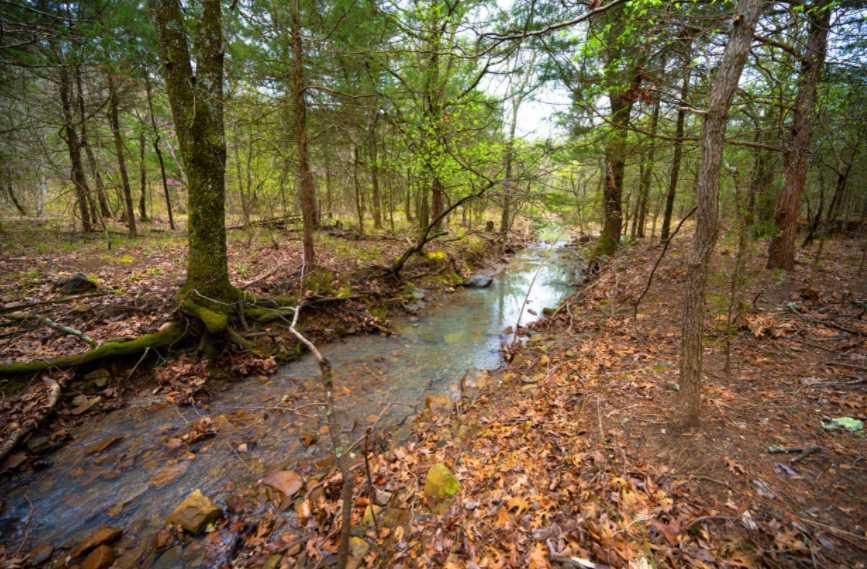 land, ranch, recreational, hunting, oklahoma, cabin | Rock Creek Ranch II - 42.45 Acres  Bengal, OK 74563 1