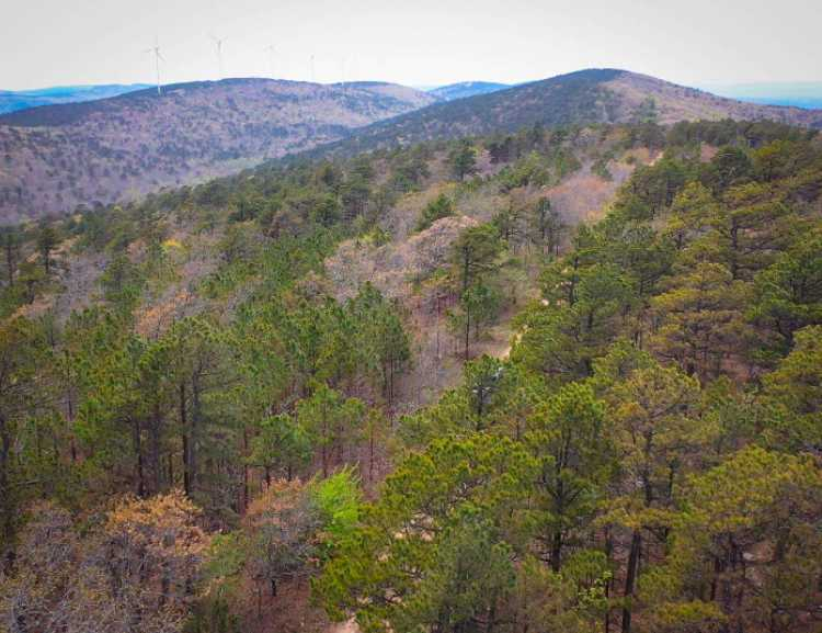 Land, hunting, cabins,  recreational land, hunting land | K-TRAIL VISTA - 22.46 AC ALBION, OK 74521 12