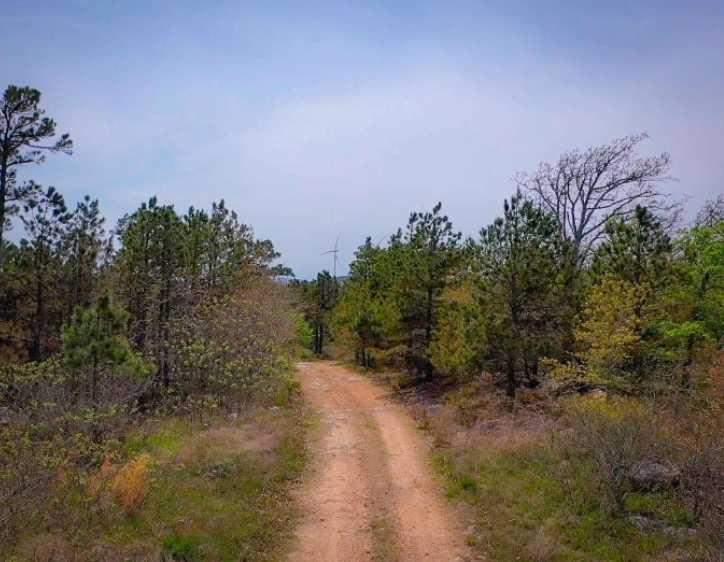 Land, hunting, cabins,  recreational land, hunting land | K-TRAIL VISTA - 22.46 AC ALBION, OK 74521 13