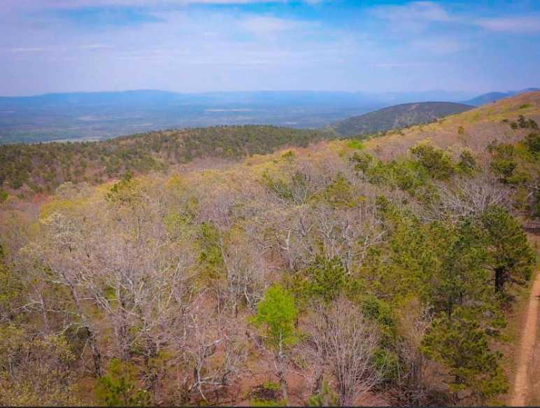 Land, hunting, cabins,  recreational land, hunting land | K-TRAIL VISTA - 22.46 AC ALBION, OK 74521 14
