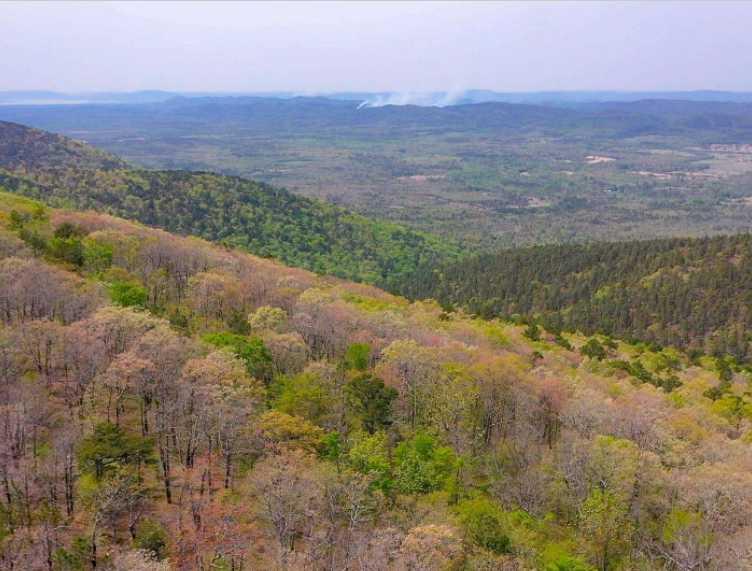 Land, hunting, cabins,  recreational land, hunting land | K-TRAIL VISTA - 22.46 AC ALBION, OK 74521 7