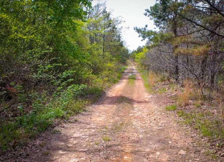 Land, hunting, cabins,  recreational land, hunting land | K-TRAIL VISTA - 22.46 AC ALBION, OK 74521 8