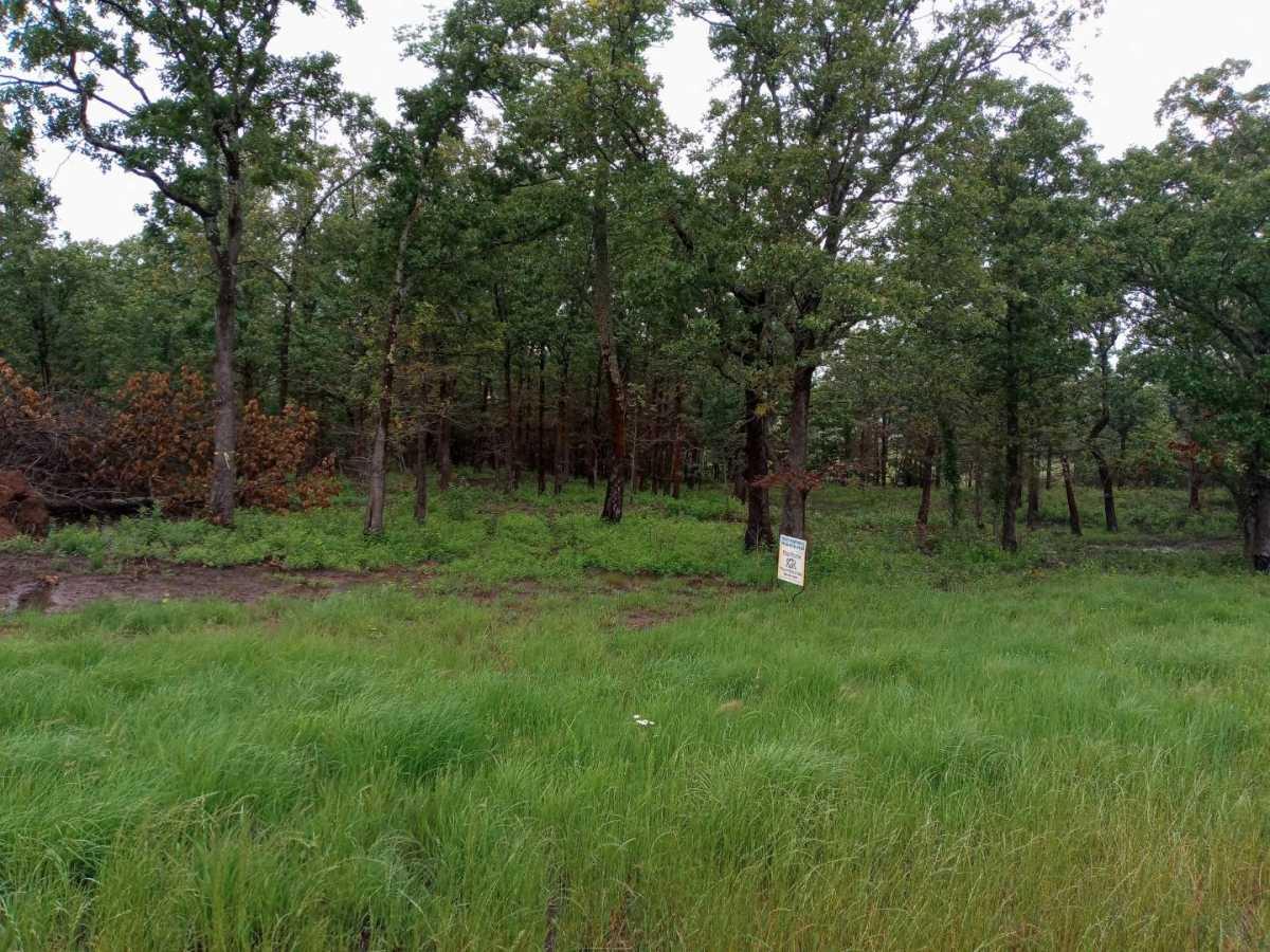 land, ranch, recreational, hunting, oklahoma, cabin | Hwy 63 Talihina, OK 74571 0