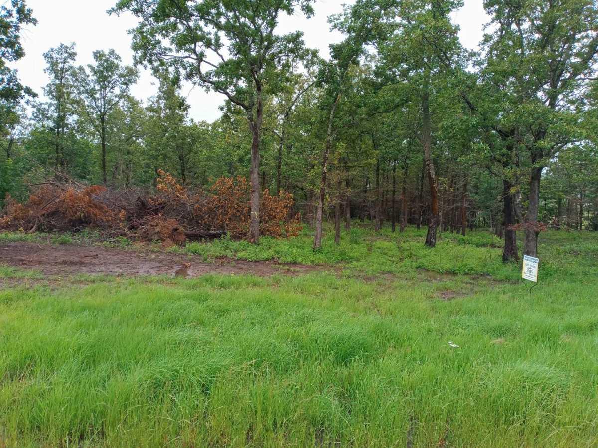 land, ranch, recreational, hunting, oklahoma, cabin | Hwy 63 Talihina, OK 74571 1