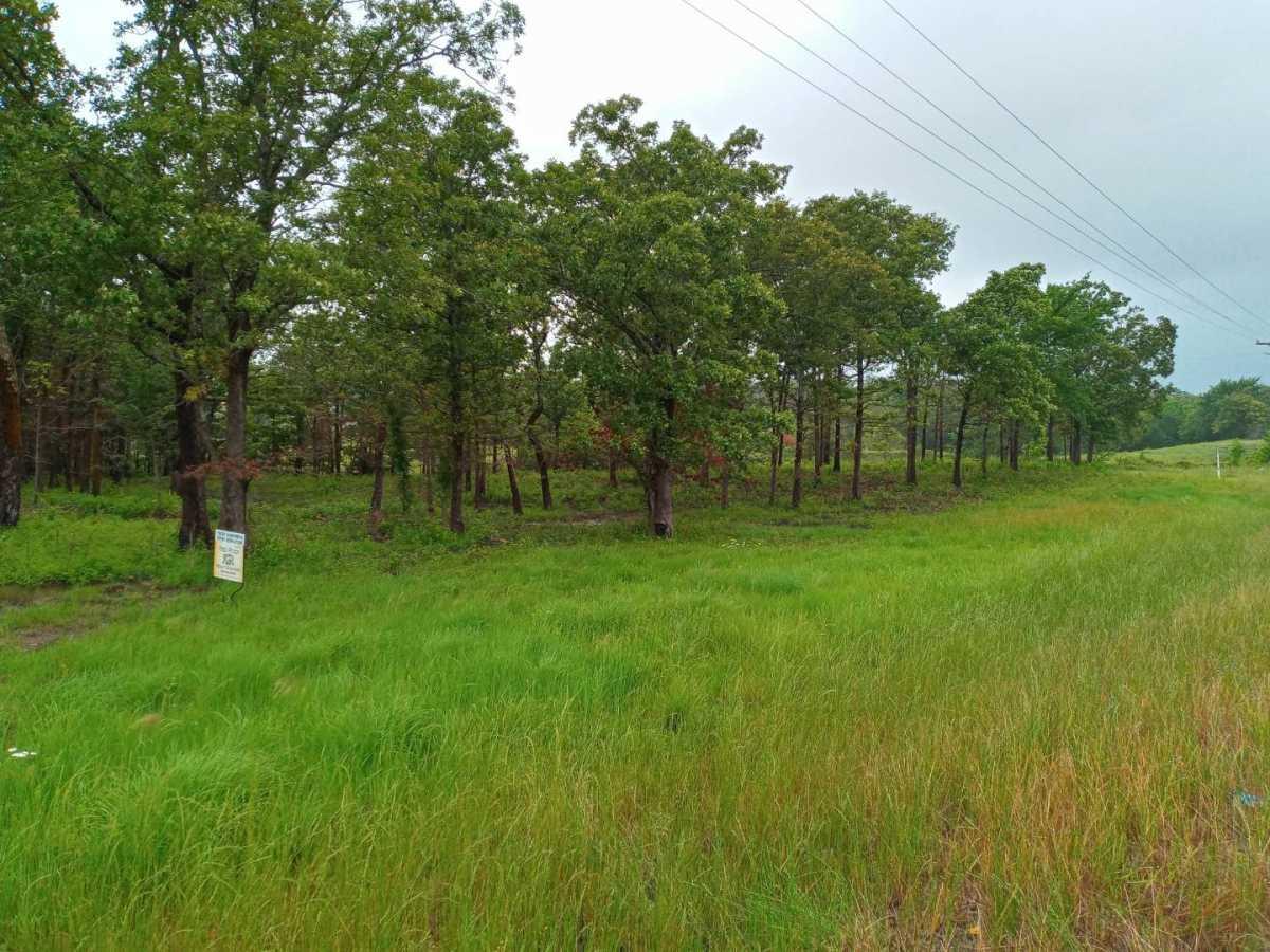 land, ranch, recreational, hunting, oklahoma, cabin | Hwy 63 Talihina, OK 74571 2
