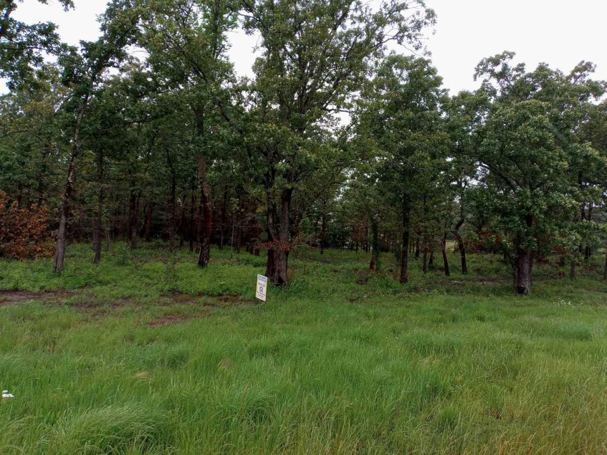 land, ranch, recreational, hunting, oklahoma, cabin | Hwy 63 Talihina, OK 74571 3