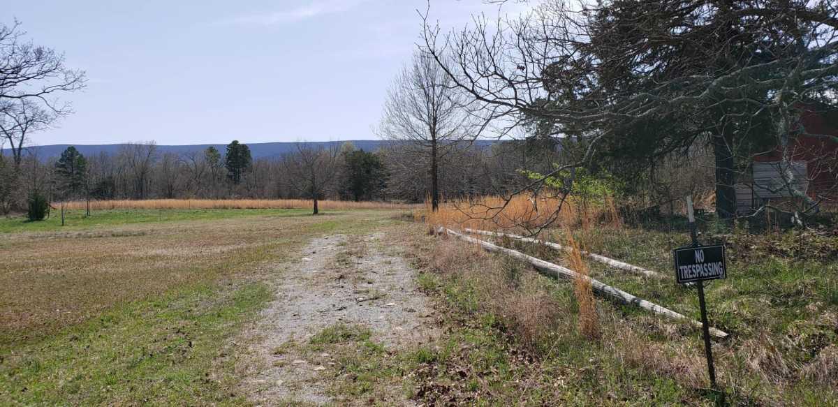 land, ranch, recreational, hunting, oklahoma, cabin | 32881 Lenox Rd Muse, OK 74949 2