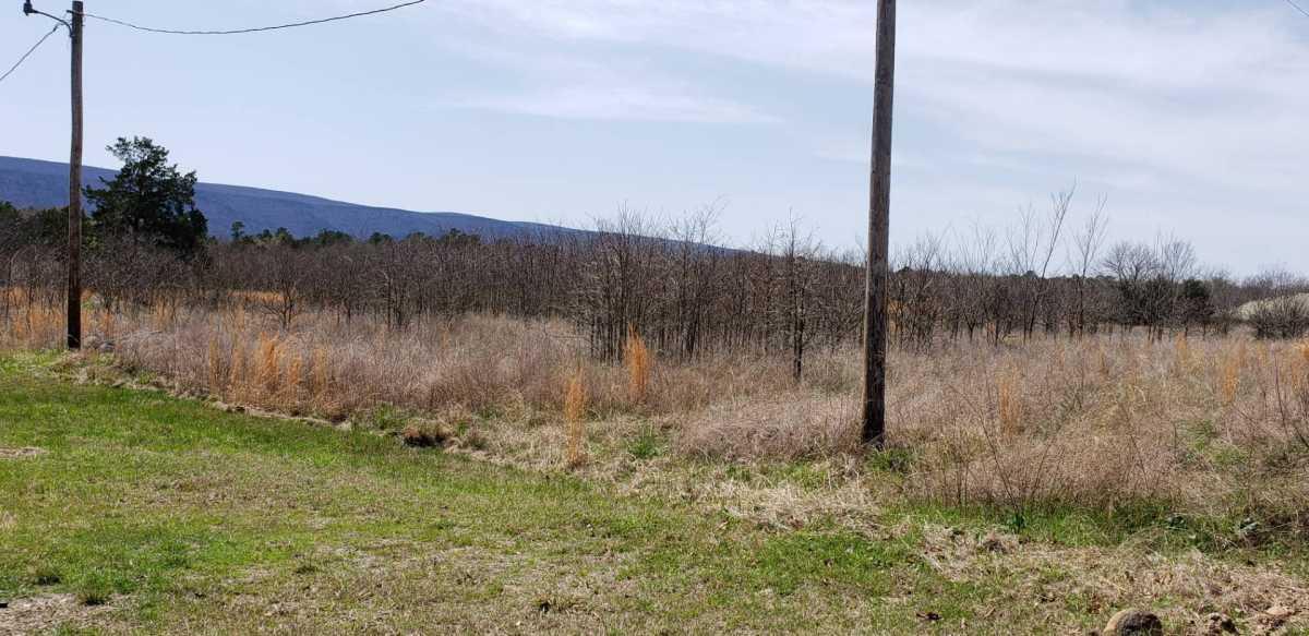 land, ranch, recreational, hunting, oklahoma, cabin | 32881 Lenox Rd Muse, OK 74949 4