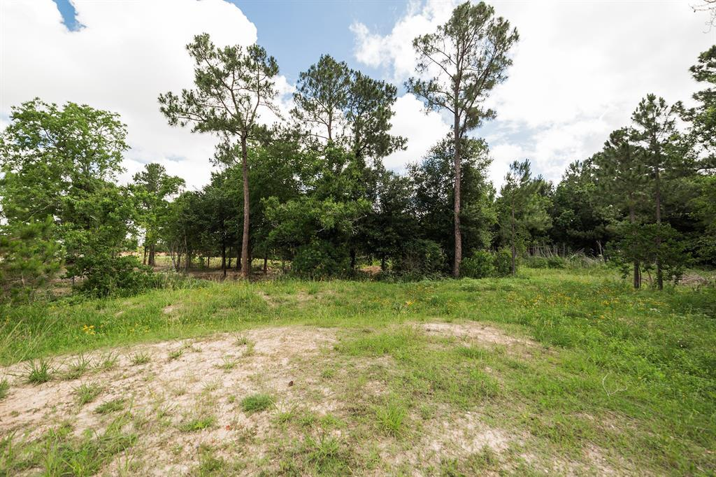 Pending | 0 Saddlespur Lane Katy, TX 77494 33